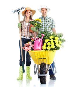 Вакансия садовник - озеленитель Сакнт-Петербург