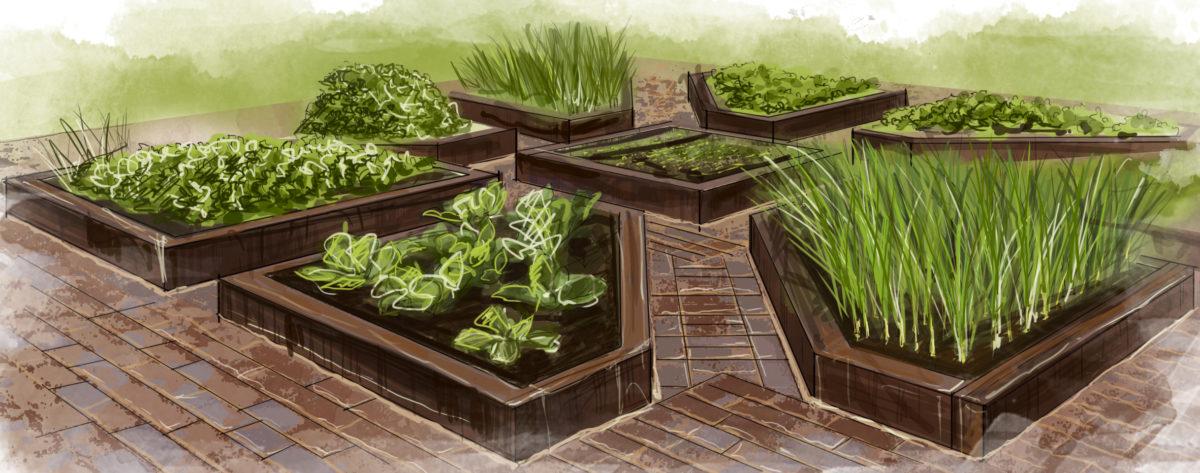 декоративные грядки и огород