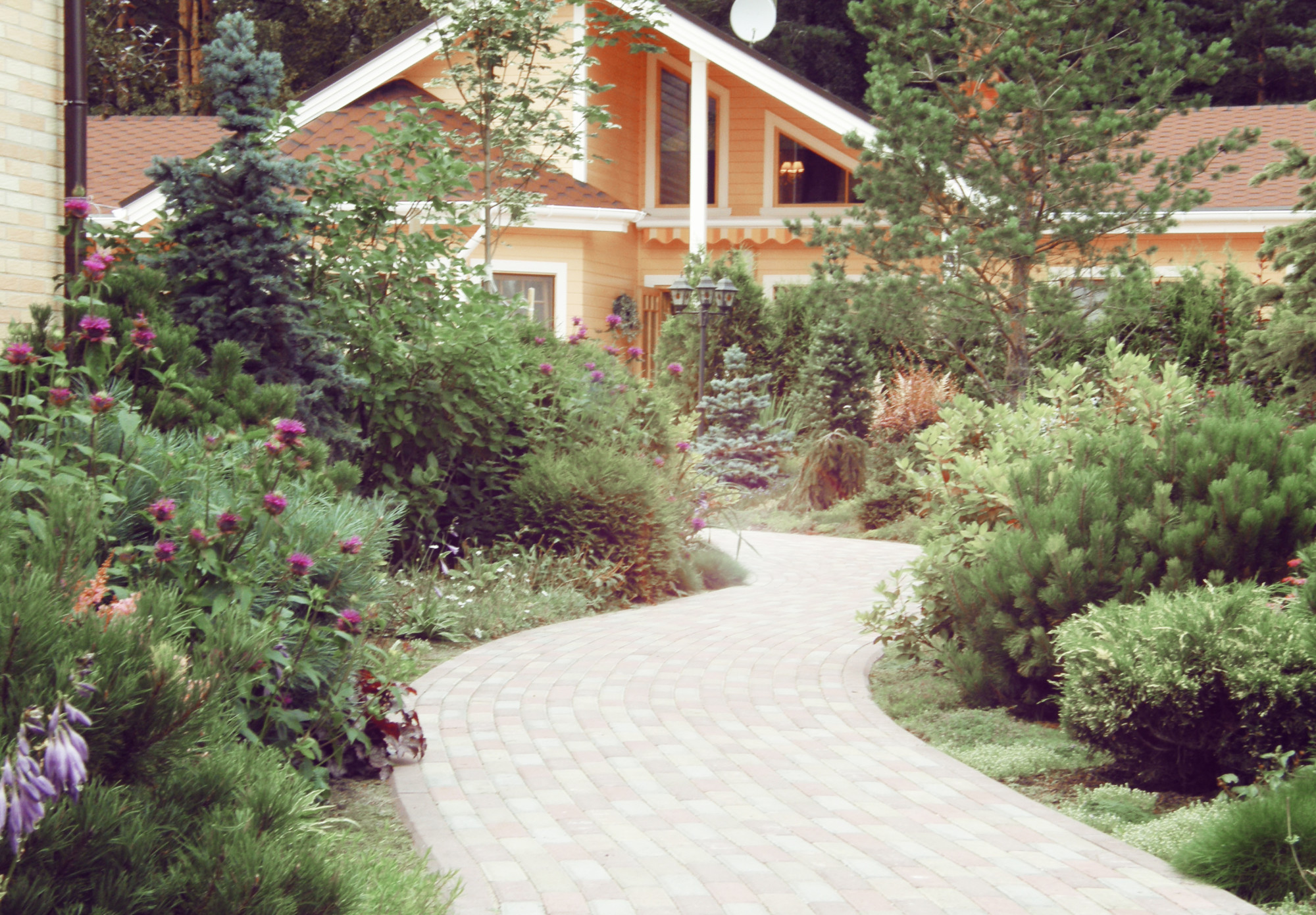 мужской сад